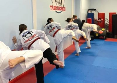 Adult Taekwondo Practicing Kicking
