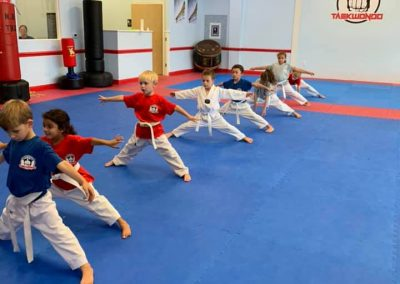 Little Dragon Tae Kwon Do Class