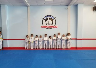 Little Dragon Taekwondo Belt Test