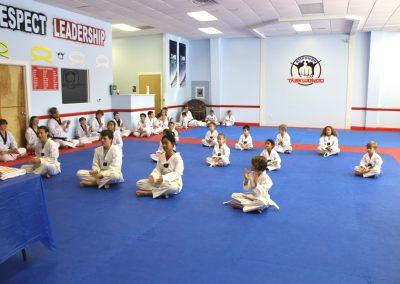 Lower belt Taekwondo Class