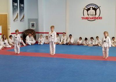 Taekwondo Belt Test White Belt