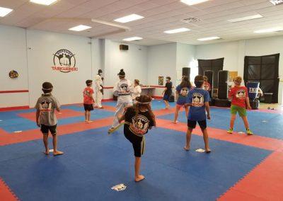 COVID-19 Martial Art Class