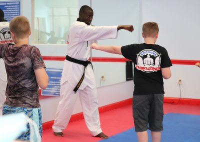 Taekwondo punching training