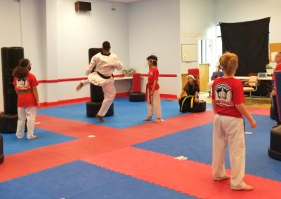 Youth Dragon Taekwondo for kids