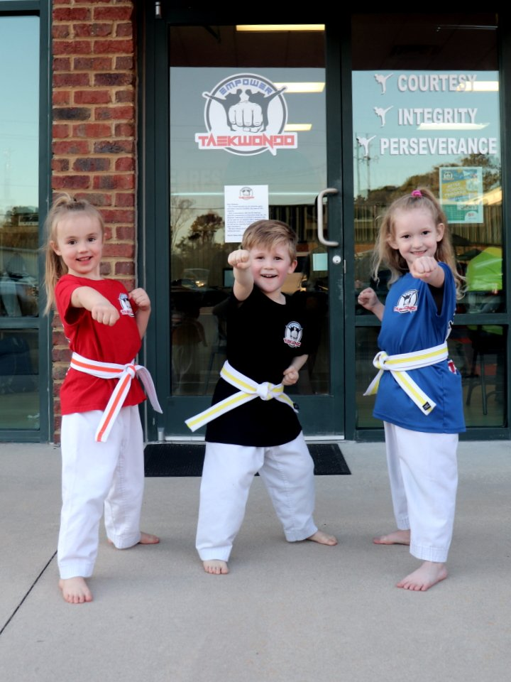 Taekwondo Martialart Class for little kids