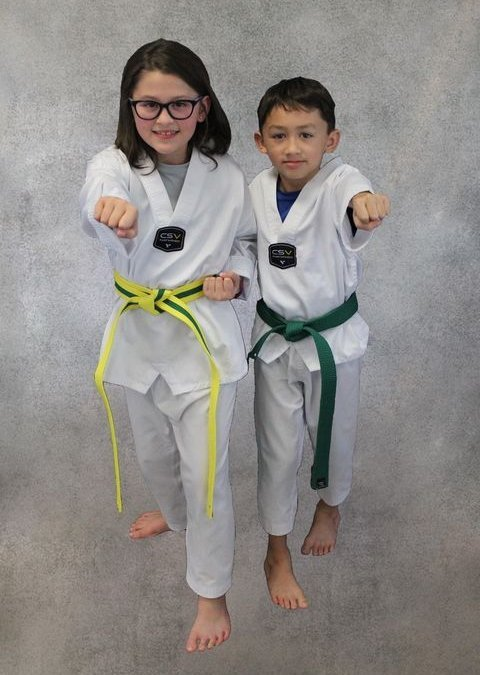 Martial art girl and boy